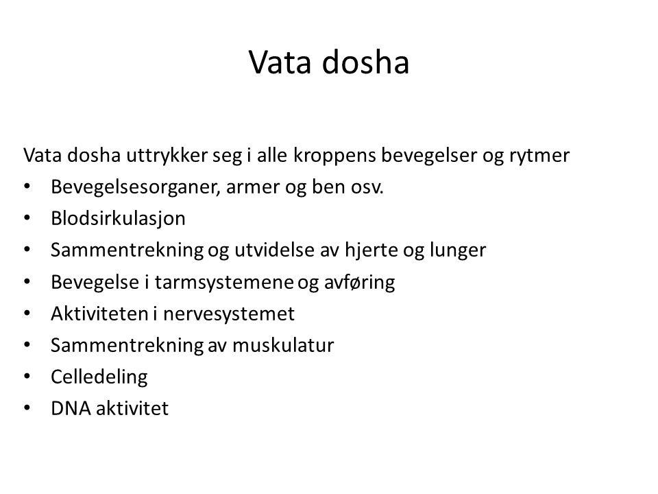 Vata dosha Vata dosha uttrykker seg i alle kroppens bevegelser og rytmer. Bevegelsesorganer, armer og ben osv.