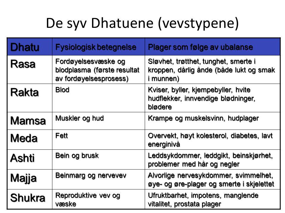 De syv Dhatuene (vevstypene)