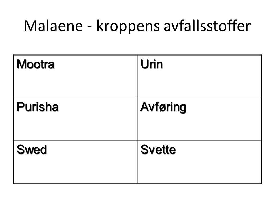 Malaene - kroppens avfallsstoffer