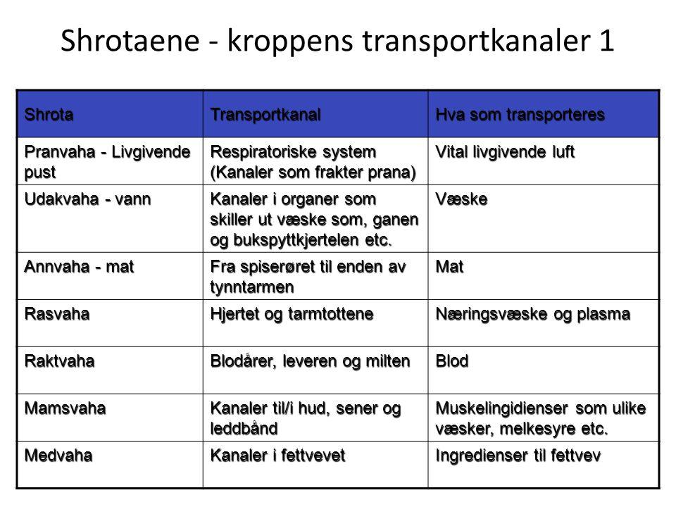 Shrotaene - kroppens transportkanaler 1