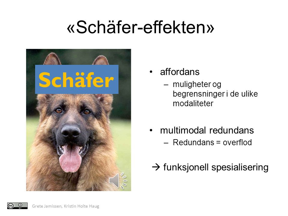 Schäfer «Schäfer-effekten»* affordans multimodal redundans