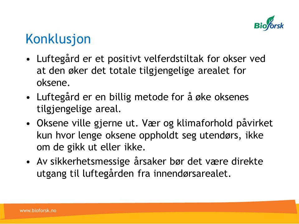 Konklusjon Luftegård er et positivt velferdstiltak for okser ved at den øker det totale tilgjengelige arealet for oksene.