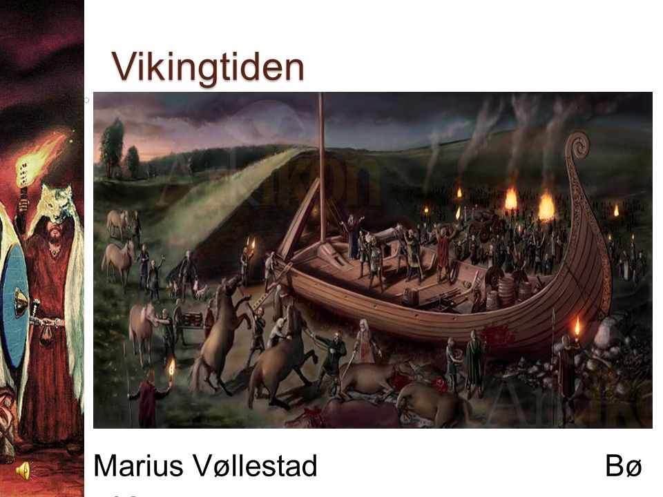 Marius Vøllestad Bø vgs.