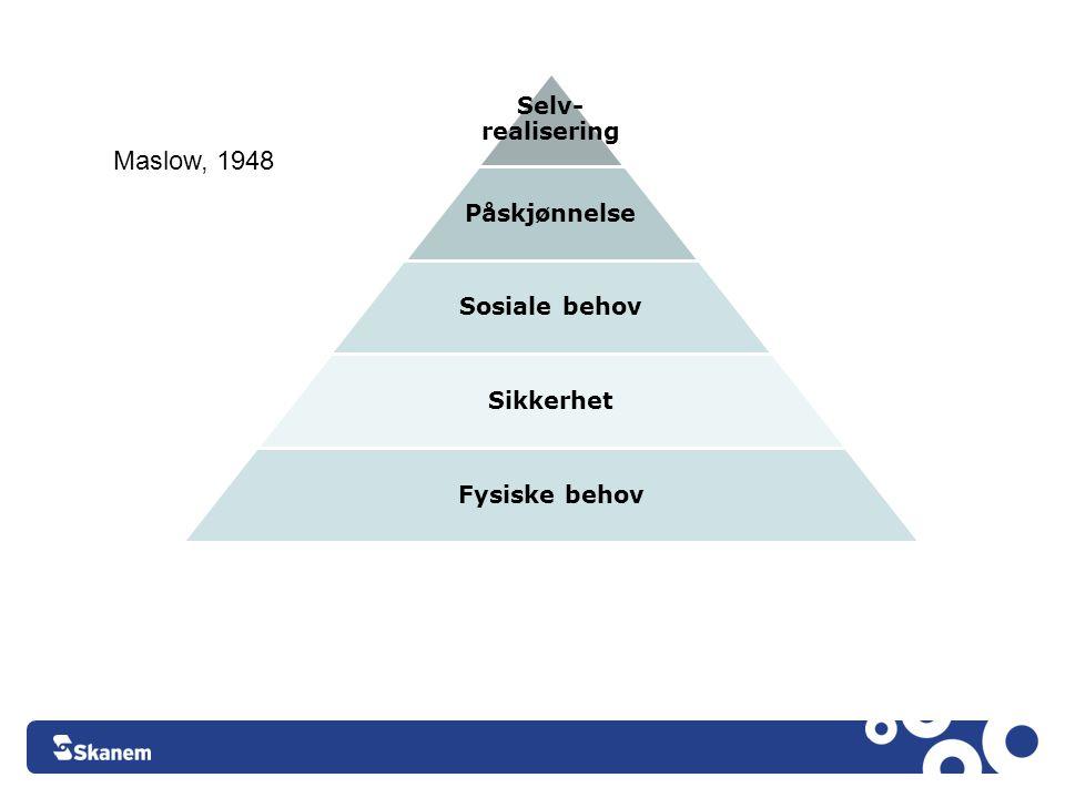 Facebook Maslow, 1948 Selv-realisering Påskjønnelse Sosiale behov