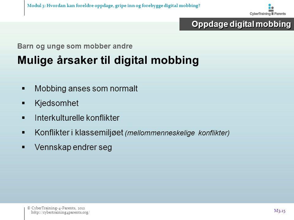 Mulige årsaker til digital mobbing