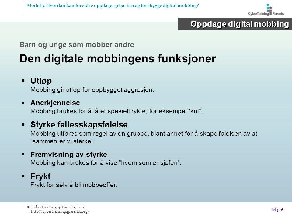 Den digitale mobbingens funksjoner