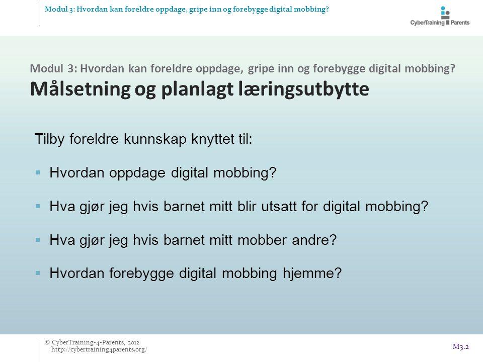 Tilby foreldre kunnskap knyttet til: Hvordan oppdage digital mobbing