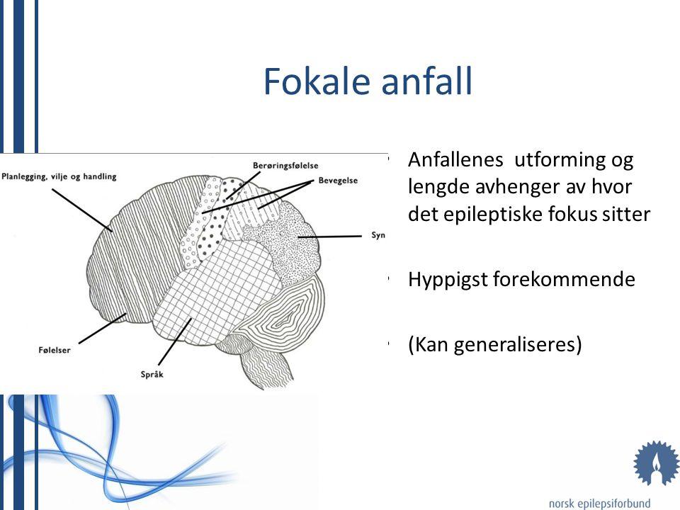 Fokale anfall Anfallenes utforming og lengde avhenger av hvor det epileptiske fokus sitter. Hyppigst forekommende.