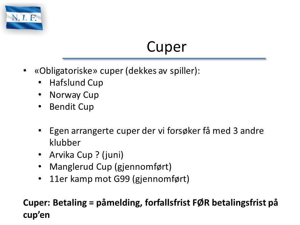 Cuper «Obligatoriske» cuper (dekkes av spiller): Hafslund Cup
