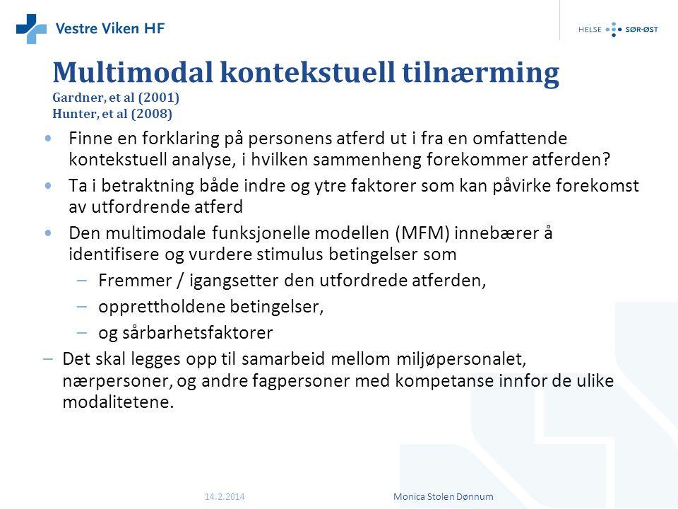 Multimodal kontekstuell tilnærming Gardner, et al (2001) Hunter, et al (2008)