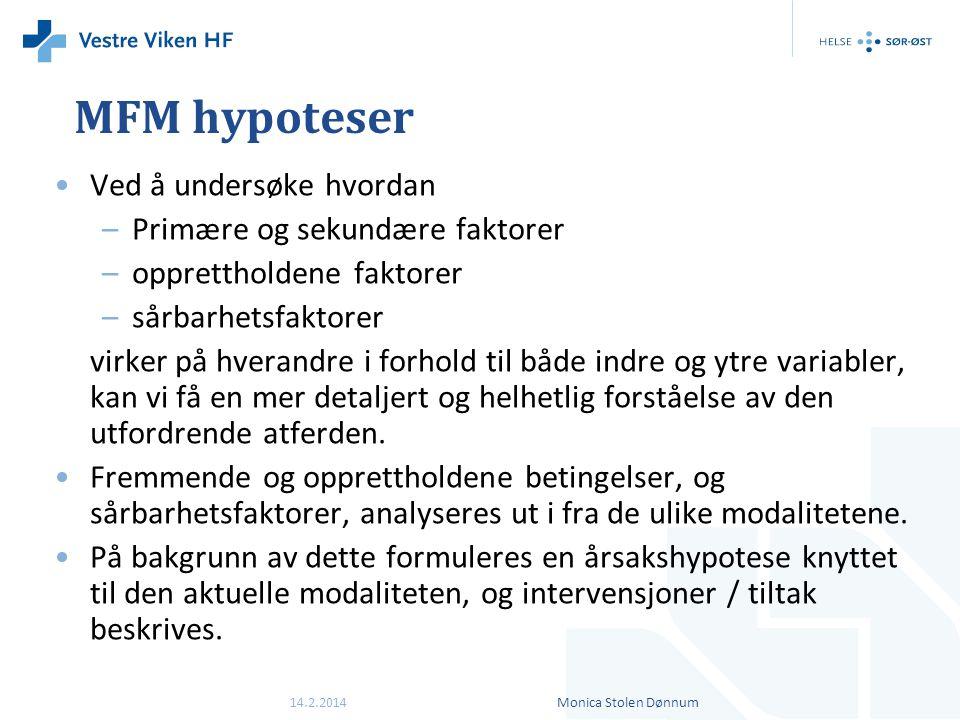MFM hypoteser Ved å undersøke hvordan Primære og sekundære faktorer
