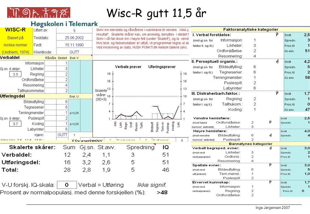 Wisc-R gutt 11,5 år