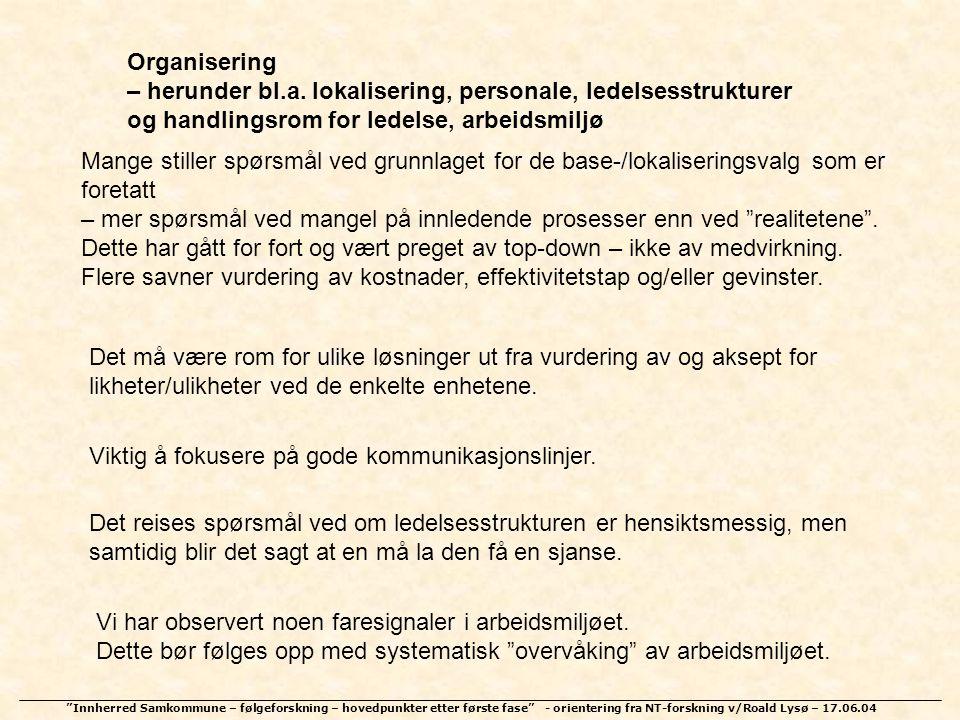 Organisering – herunder bl.a. lokalisering, personale, ledelsesstrukturer. og handlingsrom for ledelse, arbeidsmiljø.