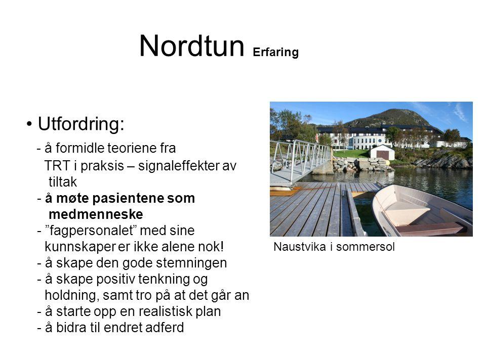 Nordtun Erfaring Utfordring: - å formidle teoriene fra
