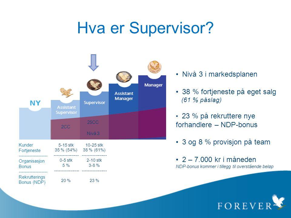 Hva er Supervisor Nivå 3 i markedsplanen