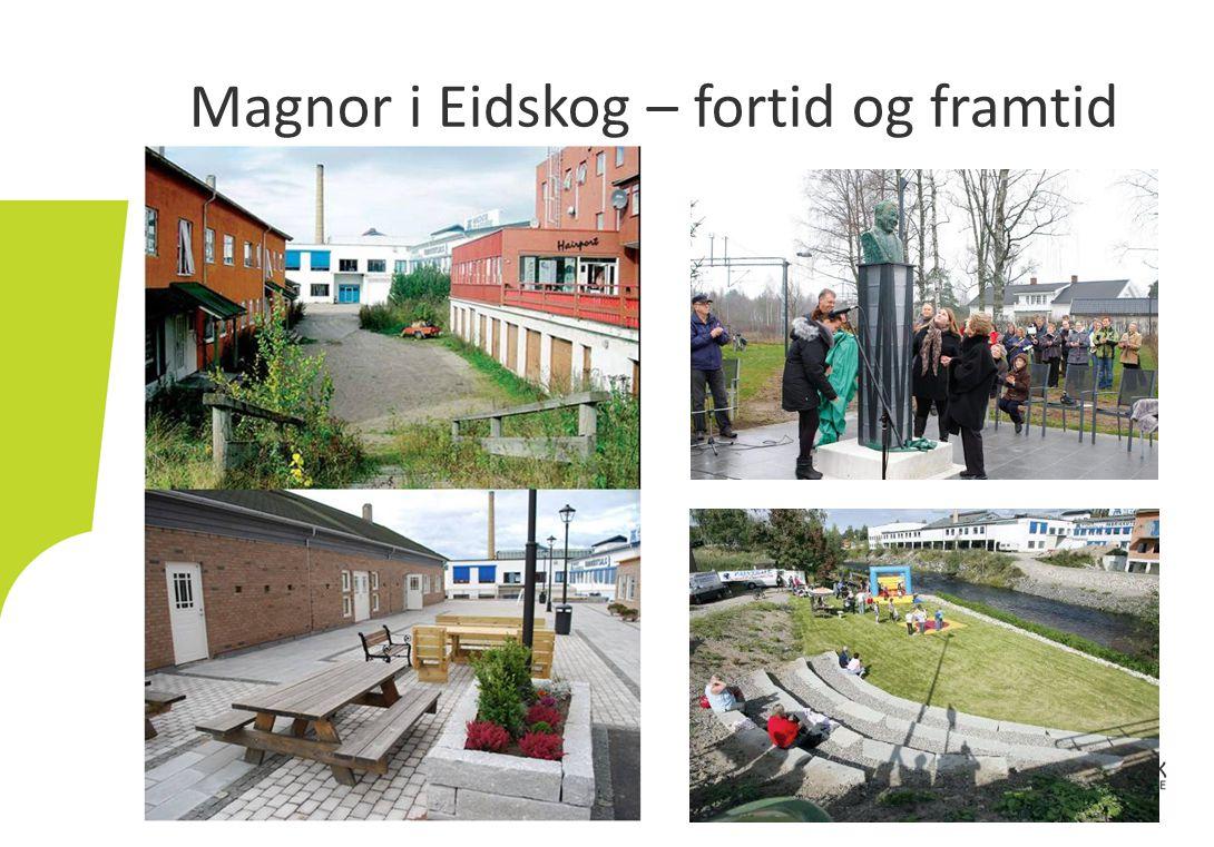 Magnor i Eidskog – fortid og framtid