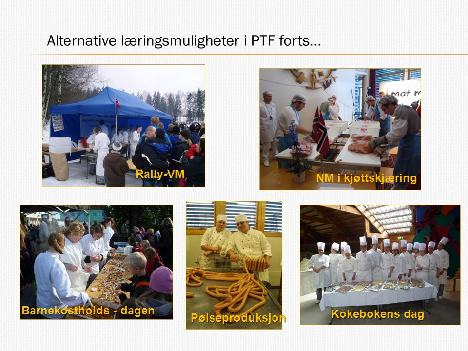 Alternative læringsmuligheter i PTF forts…
