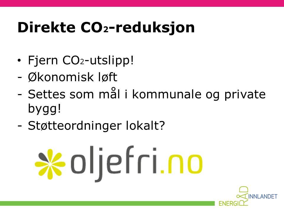 Direkte CO2-reduksjon Fjern CO2-utslipp! Økonomisk løft