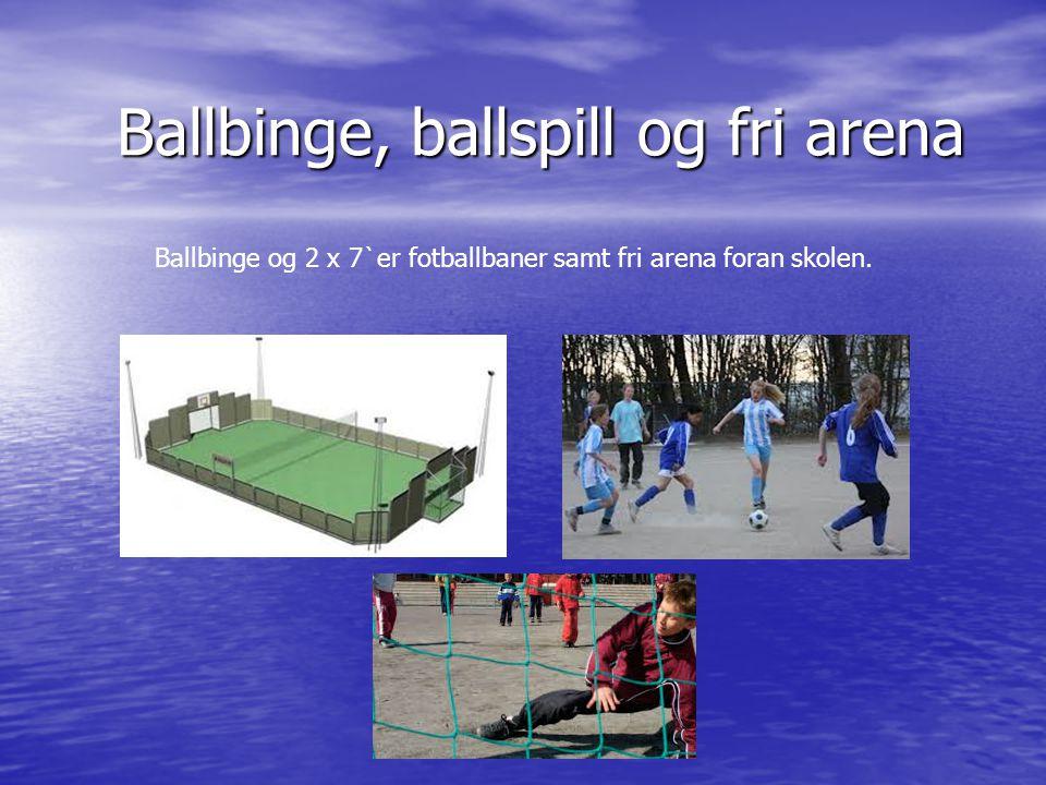 Ballbinge, ballspill og fri arena