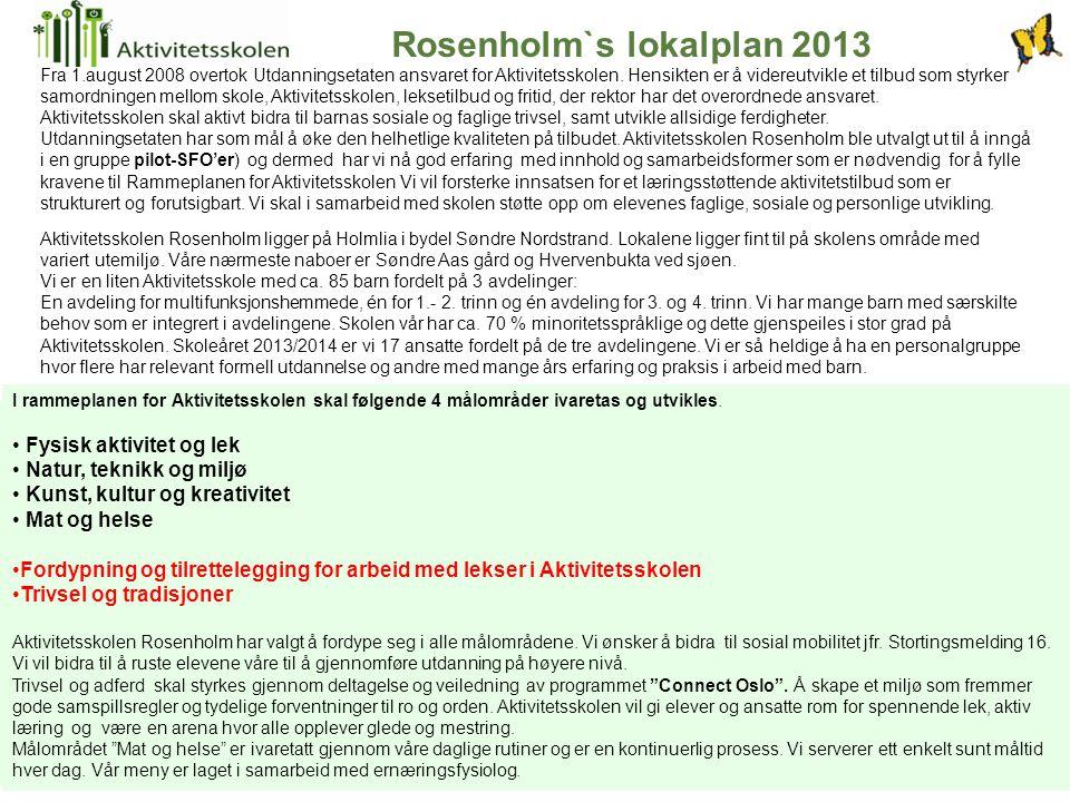 Rosenholm`s lokalplan 2013
