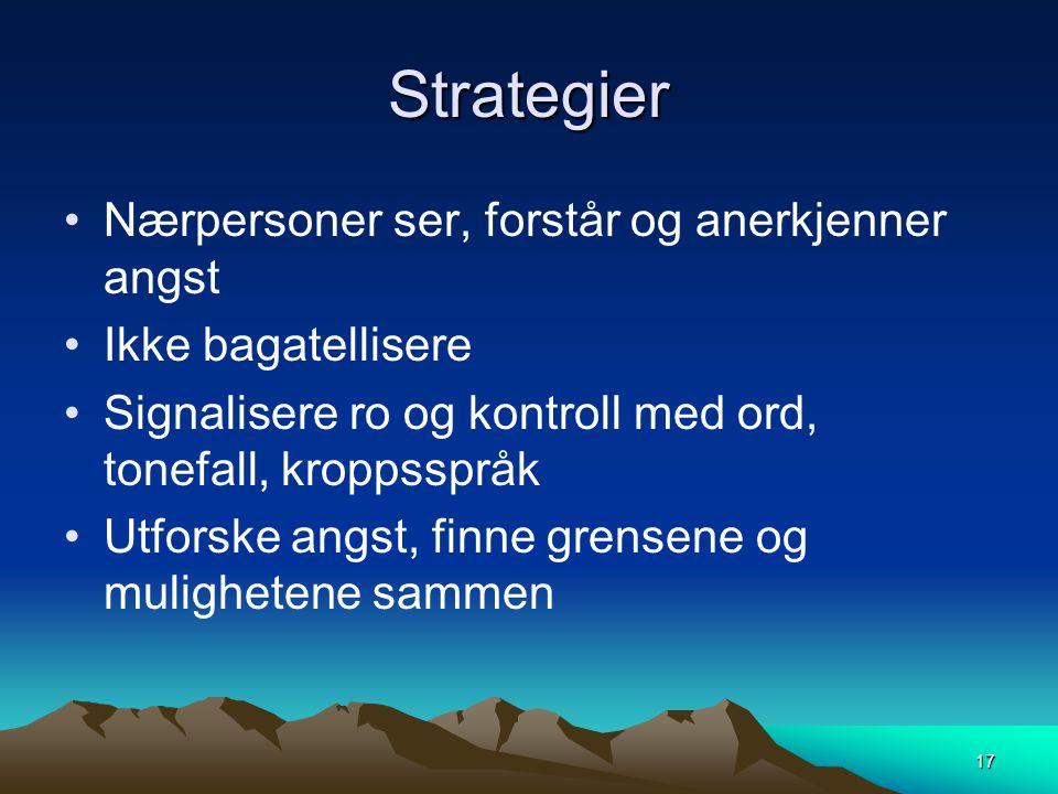 Strategier Nærpersoner ser, forstår og anerkjenner angst