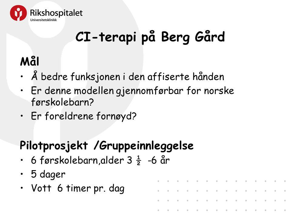 CI-terapi på Berg Gård Mål Pilotprosjekt /Gruppeinnleggelse