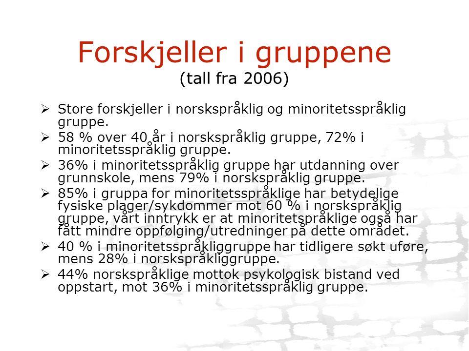 Forskjeller i gruppene (tall fra 2006)