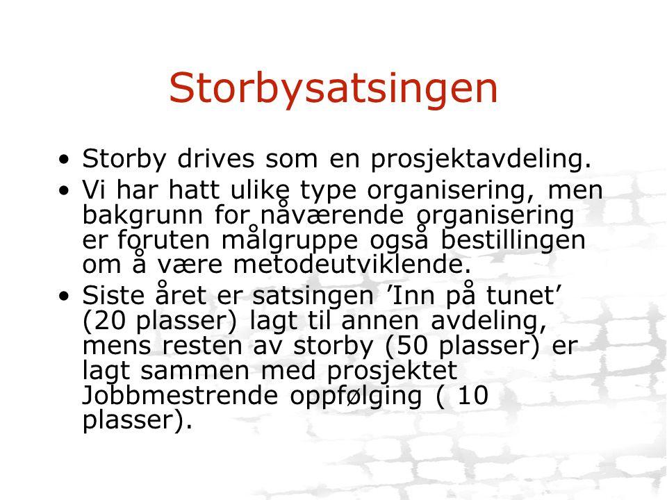 Storbysatsingen Storby drives som en prosjektavdeling.