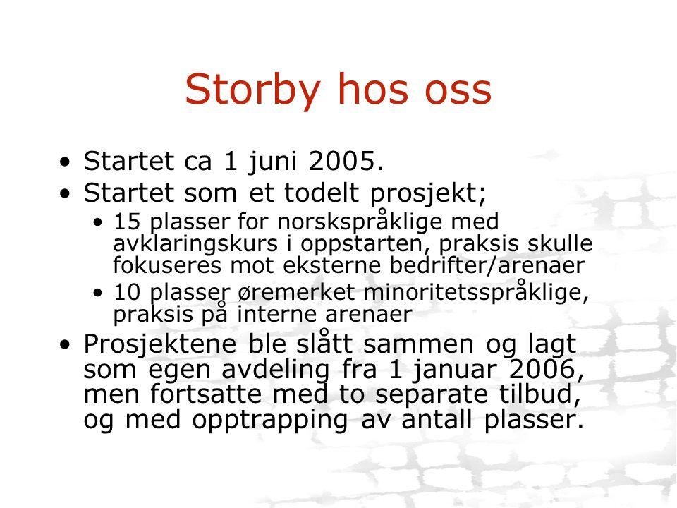 Storby hos oss Startet ca 1 juni 2005. Startet som et todelt prosjekt;