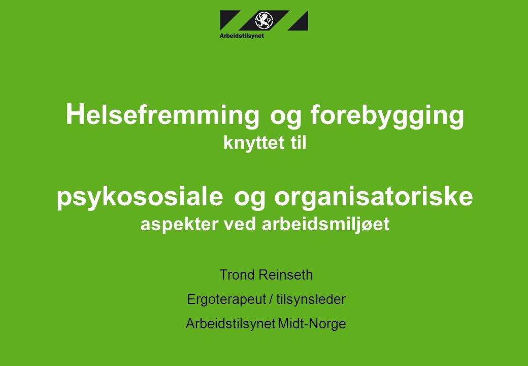 Trond Reinseth Ergoterapeut / tilsynsleder Arbeidstilsynet Midt-Norge