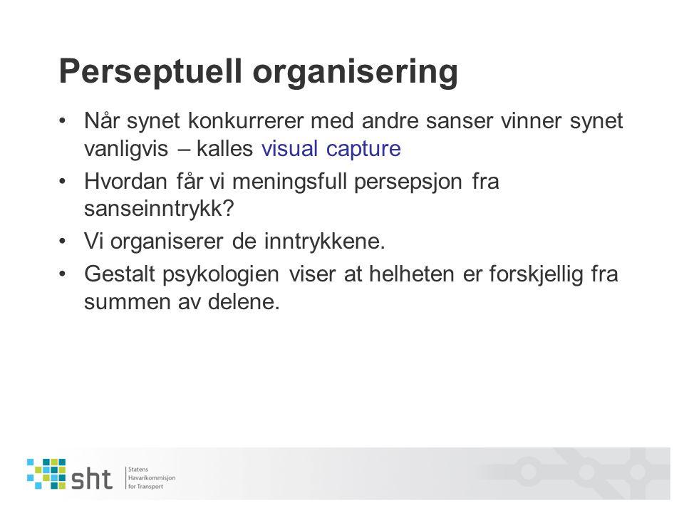 Perseptuell organisering