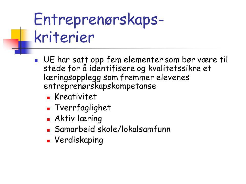 Entreprenørskaps- kriterier