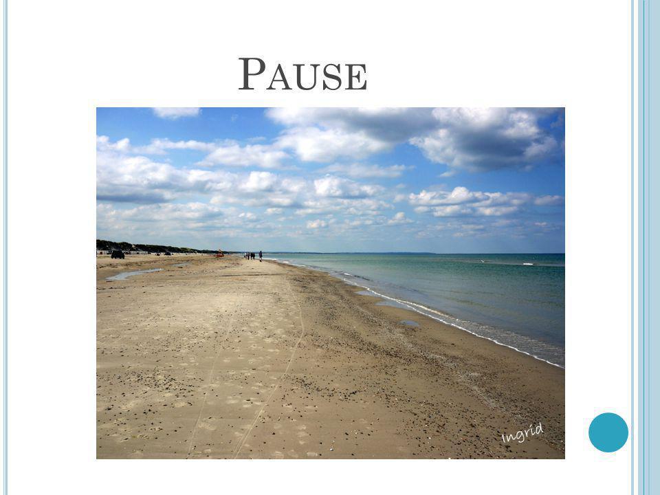 Pause Dersom du som kursleder ser at det passer bedre med pause et annet sted, bruker du bare bildet som det passer 