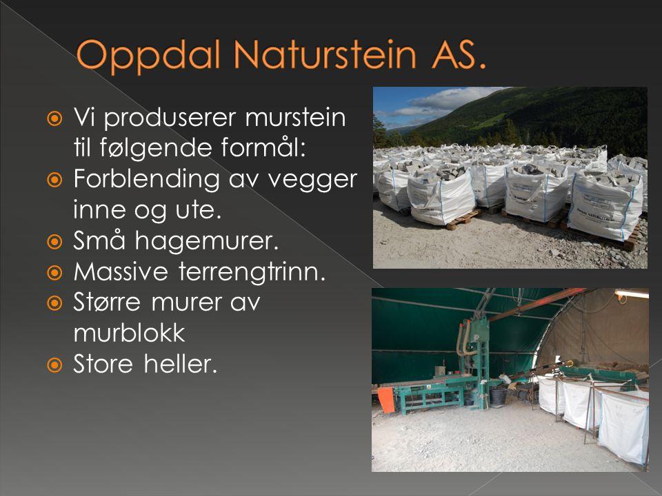 Oppdal Naturstein AS. Vi produserer murstein til følgende formål: