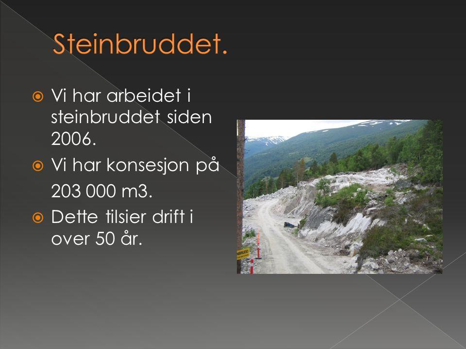 Steinbruddet. Vi har arbeidet i steinbruddet siden 2006.