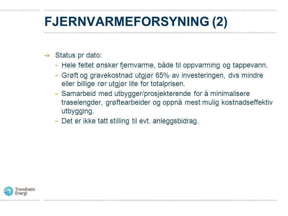Fjernvarmeforsyning (2)