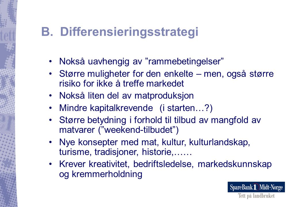 B. Differensieringsstrategi