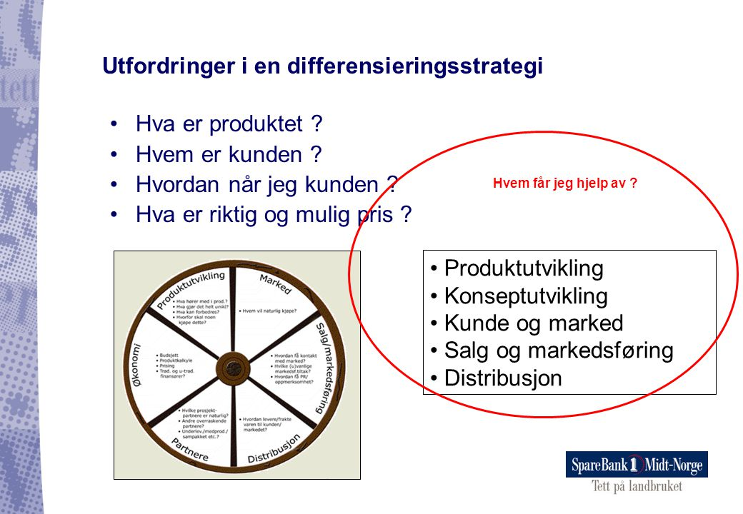Utfordringer i en differensieringsstrategi