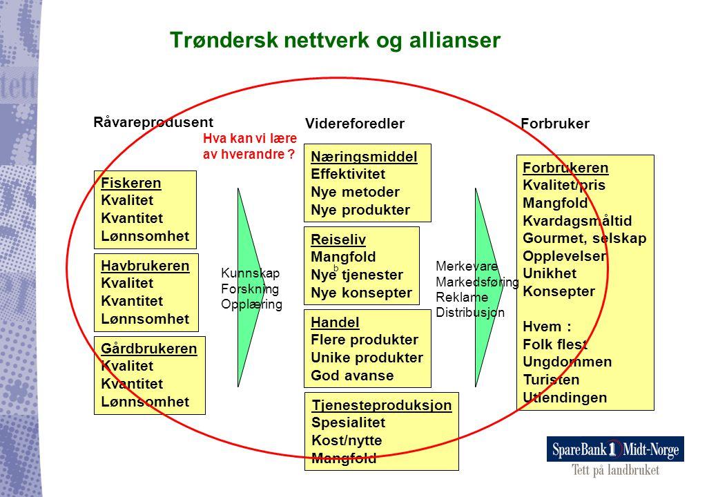 Trøndersk nettverk og allianser