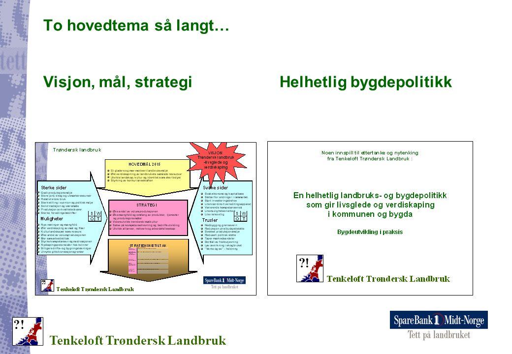 To hovedtema så langt… Visjon, mål, strategi Helhetlig bygdepolitikk