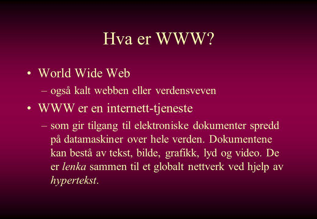 Hva er WWW World Wide Web WWW er en internett-tjeneste