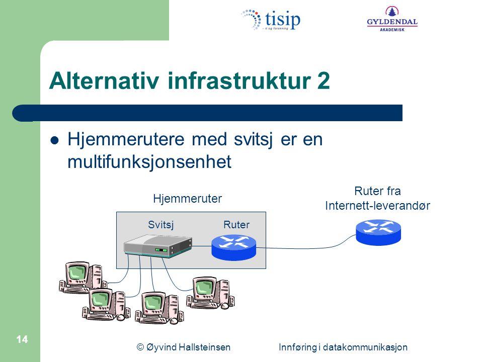 Alternativ infrastruktur 2