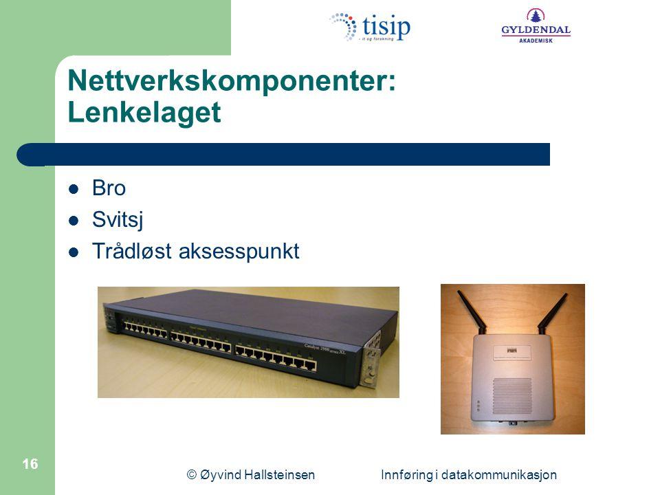 Nettverkskomponenter: Lenkelaget