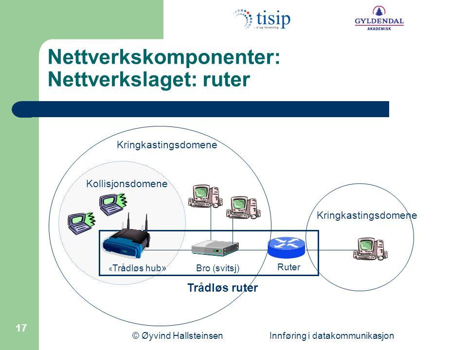 Nettverkskomponenter: Nettverkslaget: ruter