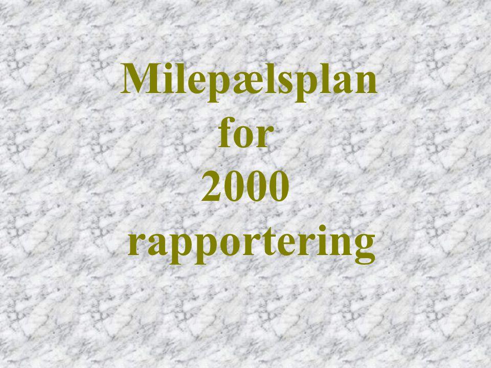Milepælsplan for 2000 rapportering