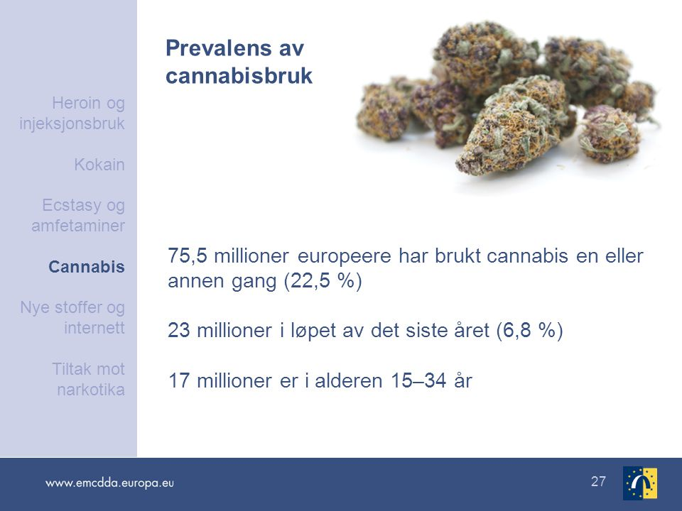 Prevalens av cannabisbruk