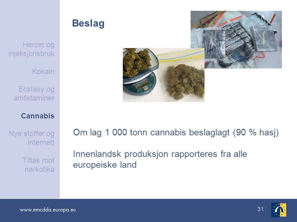 Beslag Om lag 1 000 tonn cannabis beslaglagt (90 % hasj)