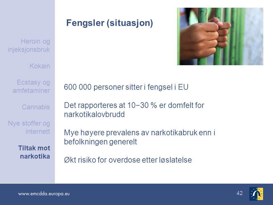Fengsler (situasjon) 600 000 personer sitter i fengsel i EU