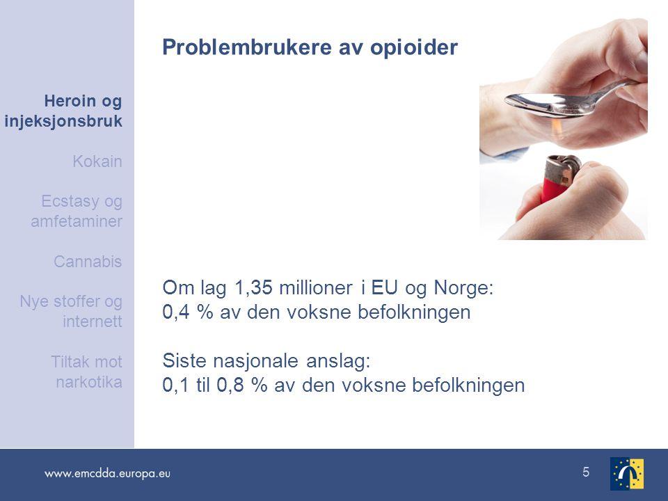 Problembrukere av opioider