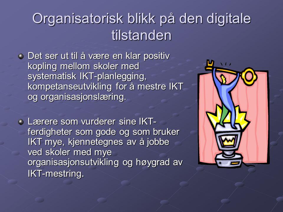 Organisatorisk blikk på den digitale tilstanden